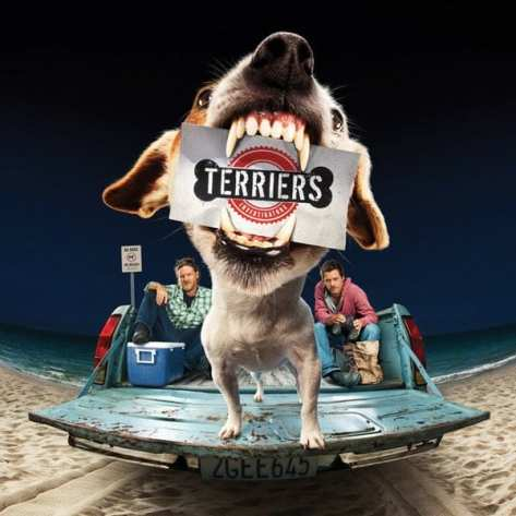 terriers ad