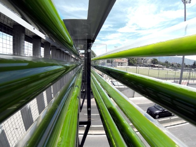 Cloud Collective: Highway Side Algae Farm Devours Pollutants