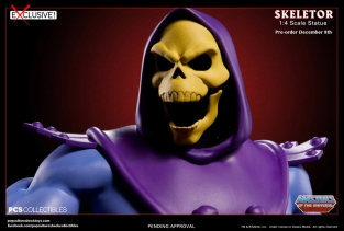 pop culture shock toys skeletor 6