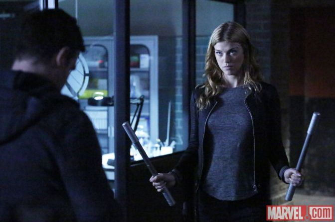 Adrianne Palicki to Lead New Agents of SHIELD Spin-Off