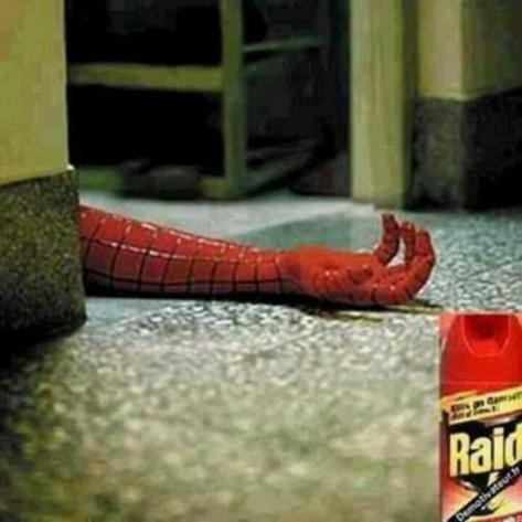 spider raid