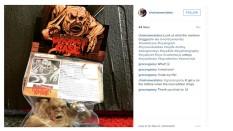 chainsaw estate instagram 12