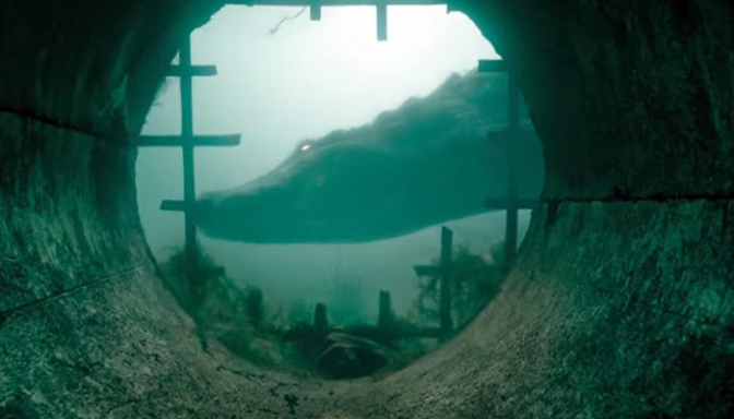 Crawl: First Trailer For Alex Aja And Sam Raimi's Alligators In A Hurricane Horror