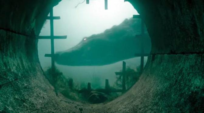 Crawl: First Trailer For Alex Aja And Sam Raimi's Alligators In A Hurricane Horror